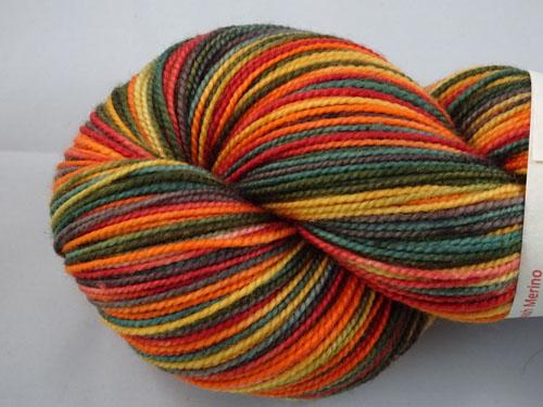 Wishing For Autumn SW Merino Sock Yarn